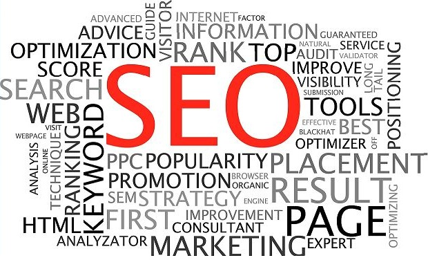 SEO Expert for Optimization
